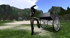 Pony and Cart at FPR 2.Snapshot_001